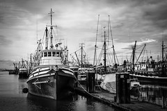 _DSF0098 (rdpe50) Tags: bw acros fraserriver water fishingboats commercial sea dock steveston richmond bc