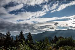 premiere lumire (cedric.simonot) Tags: nature paysage hautesaone belfahy nikond3200 1685mm