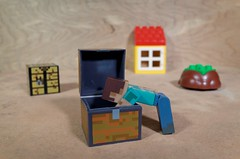 Searching (Busted.Knuckles) Tags: home toys minecraft miniature lego duplo dxoopticspro11 ricoh