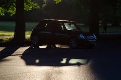 Mini (Spannarama) Tags: greenwichpark london uk sunshine sunlight lowsun shadows park trees grass mini gnats