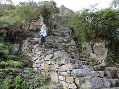 Machu Picchu-71