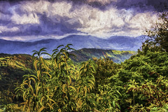 Blue Ridge Beauty (Wes Iversen) Tags: autumn trees painterly mountains nature clouds northcarolina vacations shrubs blueridgeparkway autumncolor hss tonemapping tonemap nikkor18300mm sliderssunday