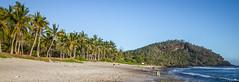 Ile de la Réunion, plage de grande Anse (Alexandre Carpentier) Tags: sunset flower réunion montain aventure iledelaréunion aigrettes grr2