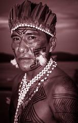 Wai Wai (guiraud_serge) Tags: brazil portrait brasil amazon indian tribe ethnic indien matogrosso indio labret brsil tribu amazonie waiwai amazone forttropicale ethnie kayapo kuikuro metuktire plateaulabial hautxingu parcduxingu sergeguiraud artducorps ornementcorporel