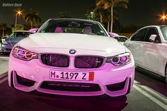 BMW meet 2014-11-12