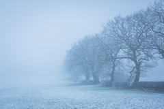 winters-day-jan-2015-9 (Nero Creative) Tags: winter snow cold ice nature outside 50mm countryside frozen cool cheshire freezing frosty 5dmkiii