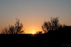 2_ Xinjiang Sunrise_( Serie 5frames )_101_3755_1 (Serge THELLIER) Tags: china nikon xinjiang chine nikond3 sergethellier