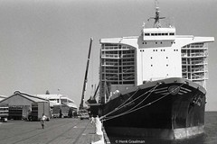 Port Adelaide passenger terminal (railfan3) Tags: ocean cruise boats ship sheep live ships transport stock australian australia terminal wharf adelaide sa shipping 1985 livestock southaustralia carrier vessels export berth n2 wharves portadelaide alyasrah livestockcarrier