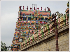 4806 - Thirumudhukundram  (Vridhachalam) 04 (chandrasekaran a) Tags: india buildings sony structures hinduism tamilnadu templeart gopurams appar vridhachalam padalpetrasthalam sundarar templesarchitecturesscuptures thevaram sambandhar saivaism thirumuraitemples mudhukundram pazhamalai figuralgopuram