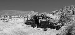 Cloverdale Ranch (joeqc) Tags: nevada nv cloverdale ranch toquima toyiabe mountain range desert dugout cousinjack log canon t3i rebel black white blackandwhite mono monochrome lost abandoned forgotten decrepit dilapidated broke down greytone oncewashome