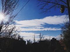 2015-11-10 07.15.43 1 (anastasiya_klenyaeva) Tags: trees sky nature russia autmn     saratov vsco vscocam vscorussia vscosaratov