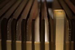 Retro Flickr (lenswrangler) Tags: macro 35mm projector kodak carousel slides digikam wheniwasachild macromonday rawtherapee lenswrangler