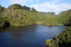 Upper Karori Reservoir (Andos_pics) Tags: newzealand reservoir wellington karori zealandia