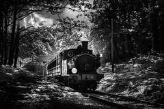 Steam delight (oxfordwight) Tags: train mono loco steam isleofwight preservation iow havenstreet