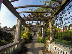 Hampstead Pergola (Ciccio_CF) Tags: wild london garden quiet treasure secret chillin hills hidden silence hampstead pergola