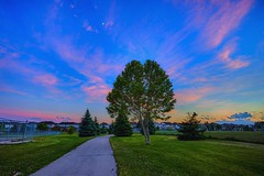A Park in Ancaster Canada (AncasterZ) Tags: park sunset bluehour ancaster canon1740mmf4l