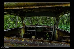 Old Car Interior (Terry L Richmond) Tags: old abandoned truck vintage woods interior canon1740 canon6d