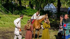 Eye Contact (Jan-Roger Olsen) Tags: 2015 2015june festival folk hest horse june juni medieval middelalder naturallight norge norway outdoor people streetphotography streetphoto tnsberg vestfold no