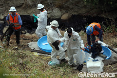 Oil Spill Recovery in California (Greenpeace USA 2016) Tags: oil spill pipeline fossilfuel ventura california pollution cleanup crude ca usa