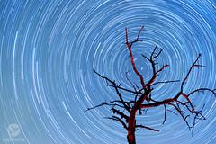 Guiding Star (Eugen Kamenew) Tags: fujifilm fujixseries fujinon fujfilmphotography night nightimages nightphotography nacht nature astrophotography astro xphototographer xseries himmel sky sternenhimmel stars sterne starsky