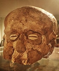 A plastered skull from the ancient city of Jericho in Palestine 7000 BCE (mharrsch) Tags: skeleton death skull unitedkingdom middleeast plaster ancestor oxford burial prehistoric neolithic levant ashmoleanmuseum neareast ancestorworship mharrsch 70thcenturybce