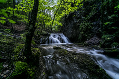 Waterfall Schliersee 8 (xdbooking) Tags: blackandwhite water forest river germany bayern bavaria waterfall wasserfall waterfalls schliersee josefstal xdarts