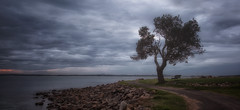 Calmness (tara.bowen) Tags: sunset cloud storm tree canon australia nsw pathway nelsonbay portstephens
