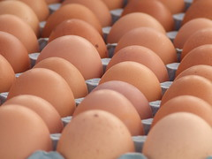 (wendyselfephotography) Tags: chicken lines symmetry eggs tray fress