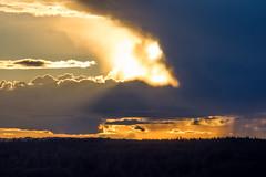 Nature's Spectacle (Jens Haggren) Tags: olympus em1 sun sunset sky light cloud clouds trees rain landscape colours