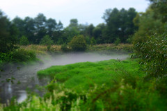 Summer Fog (alexwinger) Tags: fog summer green village river smog vape forest nikon miniature