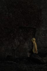 Mhary (October Fireflies) Tags: spain pontevedra galicia vigo baiona espaa fireflies october octoberfireflies tracetricking tricking trace mhary girl pikachu dark oscuro chica abrigo chaqueta
