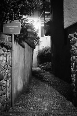 D04_2830.jpg (Gna Fo Pi) Tags: notturna biancoenero valsessera highiso biellese postua