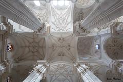 Granada Cathedral (JOAO DE BARROS) Tags: ceiling spain joo barros granada cathedral church architecture