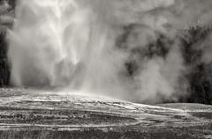 Old Faithful, Yellowstone NP (paul maxim) Tags: oldfaithful wyoming geyser bandw em1 yellowstonenp 2014fallwesterntrip