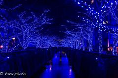 Tokyo Blue at Meguro River (kazu photo) Tags: tokyo nightview blueled nakameguro tokyoblue