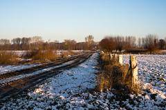 Country road in winter (martinstelbrink) Tags: morning schnee winter snow nature zeiss germany 50mm morninglight early sony nrw morgen nordrheinwestfalen planar niederrhein frh carlzeiss zm morgenlicht lowerrhinearea standardrunde a7r zeissplanar50mmf20 standardwalk alpha7r voigtlndervmeclosefocusadapter