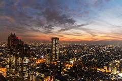 Tokyo Skyline @ Dusk (Kester Chan) Tags: city sunset sky japan architecture clouds lights tokyo shinjuku dusk cityscapes aerial