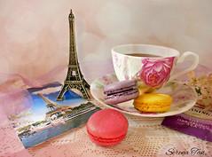 Memories of Paris  (Through Serena's Lens) Tags: life paris still bokeh postcard teacup macaroons