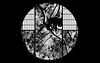 "Pine (karakutaia) Tags: sun tree love nature japan paper temple japanese tokyo heart superb card e simply sogno rockpaper afotando ""flickraward"" flickrglobal elementsorganizer allbeautifulshotsandmanymoreilovenature flowerstampblackandwhite transeguzkilorestreetarturbanagreatshotthisisexcellentcontestmovementricohgxr""serendipitygroupbluenatureicapture flickraward5""j tra realtabstract"