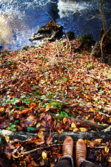 Colorful autumn (.Alex  Andra .) Tags: wood autumn orange color nature water forest automne river landscape foot colorful boots fauve