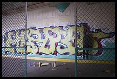 Harp GIA (Rodosaw) Tags: chicago graffiti harp gia