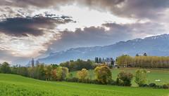 Vue sur la Chartreuse (D.Goodson) Tags: france didier blanche goodson chapelle bonfils