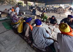 India - Punjab - Amritsar - Golden Temple - Kitchen - Chapati Section - 118 (asienman) Tags: india punjab amritsar sikhism goldentemple harmandirsahib asienmanphotography