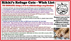 Rikki's Refuge Cats - Wish List