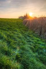 Sunset near Gristow (Kretzsche93) Tags: november sunset sunlight cold frost day wind near windy damm zaun sonne mv greifswald sturm bodden mecklenburgvorpommern greifswalder halbinsel riems meckpomm hochwasserdamm gristow fahrenbrink