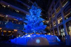 "KITTE ""White Tree"" -Winter Illumination 2014-2015 (Marunouchi, Tokyo, Japan) (t-mizo) Tags: christmas xmas canon tokyo  canon5d  lr marunouchi lightroom    kitte canon2470mm chuouku canon2470mmf4l  canon2470mmf4 eos5d3 ef2470mmf4lisusm lr5 ef2470mmf4l canon2470f4l eos5dmarkiii 5d3 canon2470f4 5dmark3 canon5d3 lightroom5 canon2470mmf4lisusm eos5dmark3 5dmarkiiii canon24704l  canon2470mmf4lis canon24704 kittewhitetree kitte"