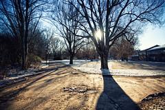 Delightful Day (Rutger Blom) Tags: road park trees winter light sun snow lund cold frozen sweden path sverige 24mm zweden canoneos5dmarkii ifttt ef2470mmf28liiusm