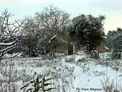 Old country cottage (alnex_) Tags: old city winter italy white holiday snow vintage landscape geotagged photography countryside photo nikon europa europe italia day photos country cottage ruin campagna neve inverno puglia hamlet bari paesaggio giorno apulia bitetto cityporn villageporn