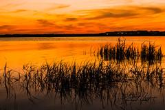 Sunset on the bay (Linford Hurst Photography) Tags: sunset orange canon landscape rebel bay md maryland t3i oceancitymd canonrebelt3i linfordhurst