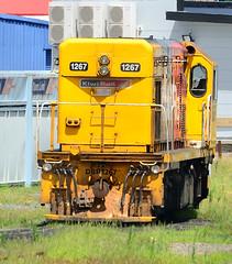 DBR1267 (anthony851.com) Tags: train locomotive whangarei g8 nal kiwirail emdg8 dbrclass dbr1267